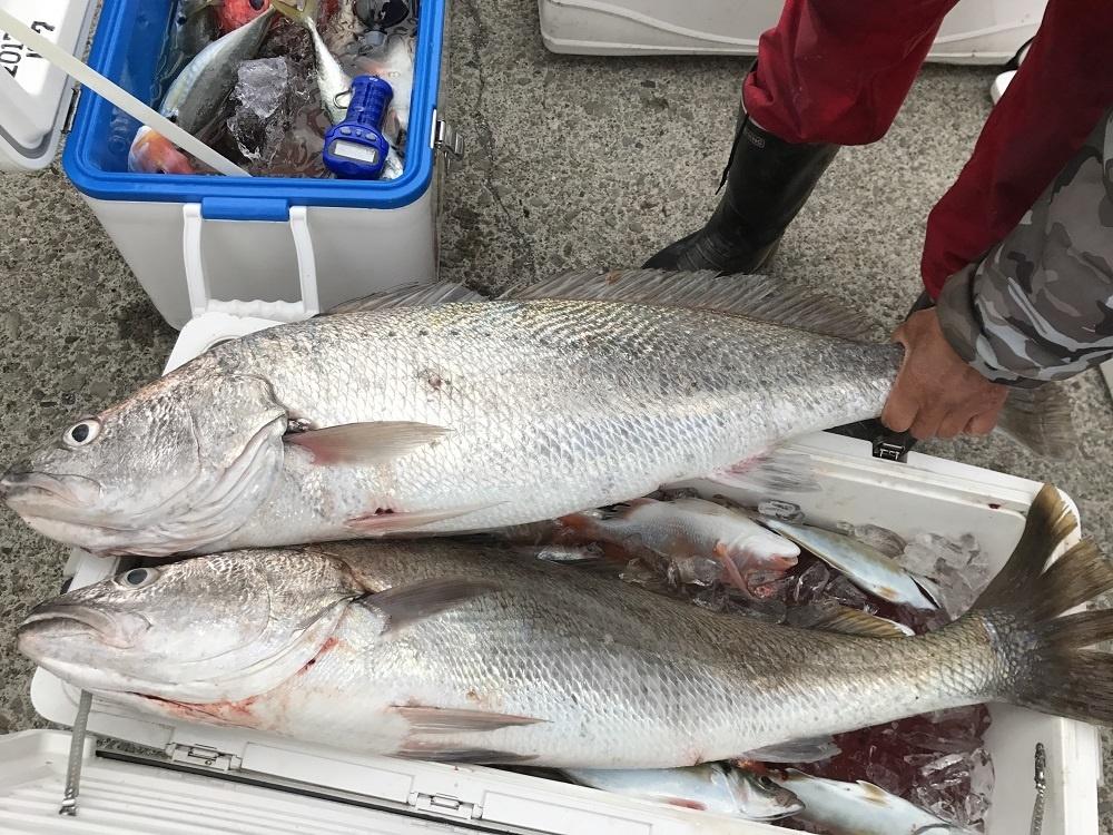 観光漁業センター オオニベ