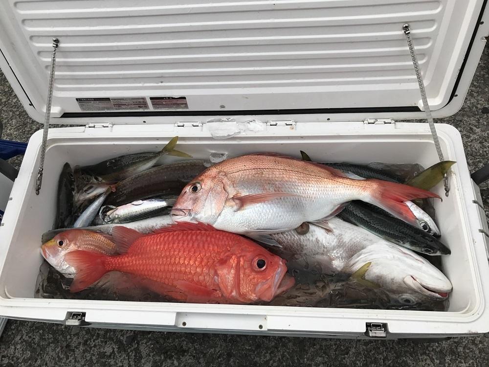 観光漁業センター  釣り